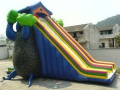 Inflatable Dryad Slide